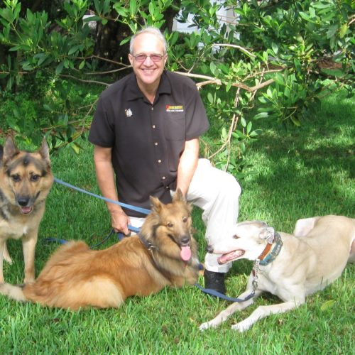 Dog Training Reviews